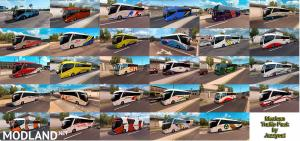 Mexican Traffic Pack by Jazzycat v1.7.1, 5 photo