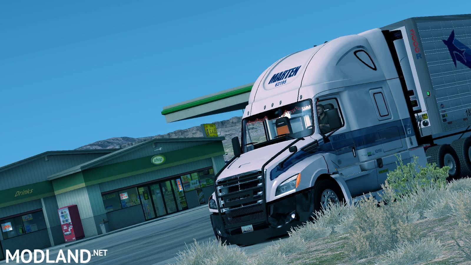 Skin Marten Transport of Freightliner Cascadia 2018 mod for American