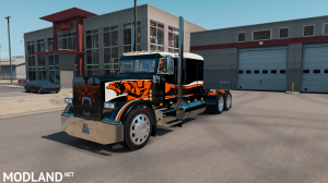 "SKIN ""CATMANDO"" FOR PETERBILT 389 1.31.X-1.35.X, 1 photo"