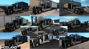 BITRAIN FIRST TRAILER OWNABLE [MP-SP] [TruckersMP] [Multiplayer], 1 photo