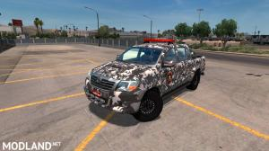 Dealer fix for Toyota Hilux