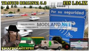 Realistic traffic 5.3 by Rockeropasiempre for v 1.34.x