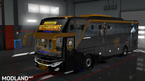 PUBG SKIN FOR INDONESIA JETBUS 3 HDD BUS IN ETS2, 2 photo