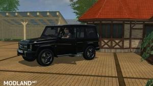 Benz G 65 AMG