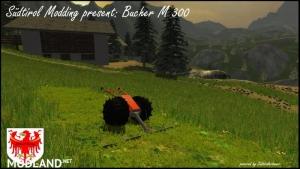 Bucher M 300, 8 photo