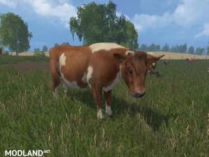 MODELS COWS  v 1.0 , 10 photo