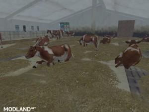 MODELS COWS  v 1.0 , 16 photo