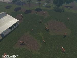 MODELS COWS  v 1.0 , 24 photo