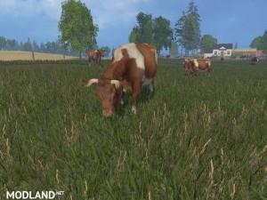 MODELS COWS  v 1.0 , 8 photo