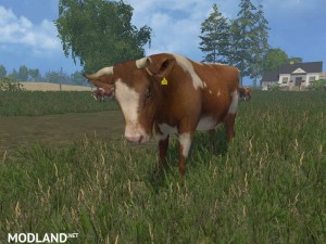 MODELS COWS  v 3.0 , 27 photo
