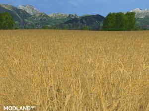 Texture wheat barley and rape v 1.0