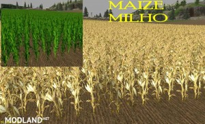 New Wheat Maize Barley Texture Pack, 2 photo