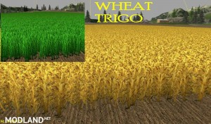 New Wheat Maize Barley Texture Pack