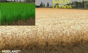 New Wheat Maize Barley Texture Pack, 4 photo