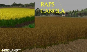 New Wheat Maize Barley Texture Pack, 3 photo