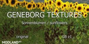 Sunflower Textures v 1.0, 3 photo