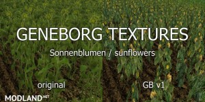 Sunflower Textures v 1.0, 4 photo