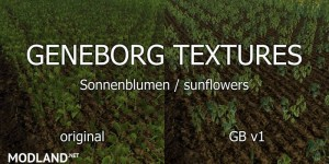 Sunflower Textures v 1.0, 5 photo