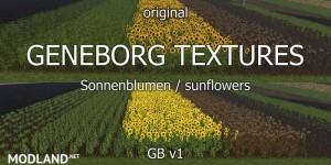 Sunflower Textures v 1.0 - Direct Download image