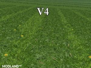 New grass texture v4, 11 photo