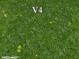 New grass texture v4, 3 photo