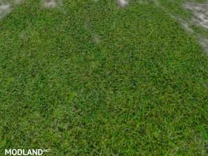 New grass texture v 5.0, 2 photo