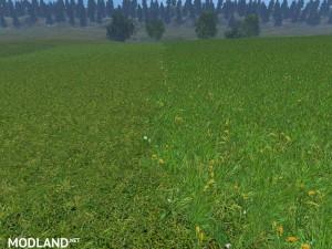 New grass texture v 5.0, 3 photo