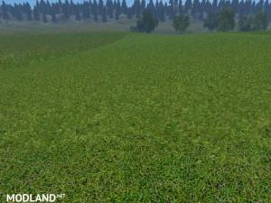 New grass texture v 5.0, 5 photo