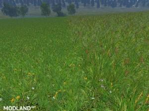 New grass texture v 5.0, 7 photo