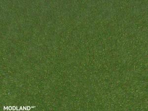 New grass texture v 5.0, 8 photo