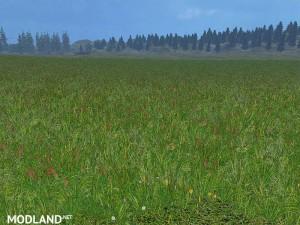 New grass texture v 5.0, 9 photo