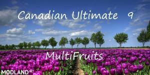 Canadian Ultimate 9