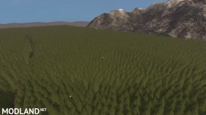 BETA Greatfields 600Ha FIELD AND HUGE FOREST. PERFECT FOR BIG BUD DLC, 7 photo