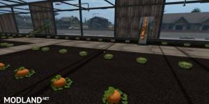 Lettuce GreenHouse v 1.0, 2 photo