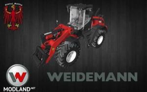 Weidemann 9080 v 1.0