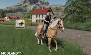 FS 19 HorseHelper