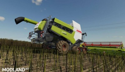 CLAAS Lexion 5300 6900 v 1.0, 1 photo