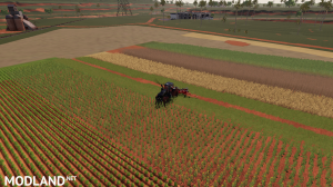 CRAZY +100m KUHN 3R12 Multifruit DirectSeeder v1.2, 4 photo