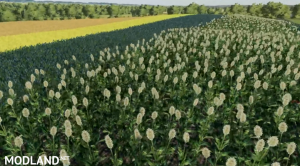 FS19 Clover Creek plus 12 crops, 4 photo