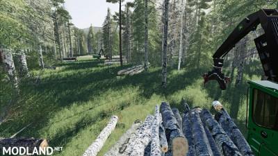 Deep Logging v 1.0, 11 photo