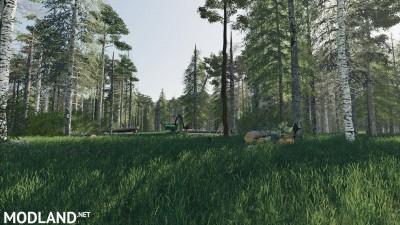 Deep Logging v 1.0, 12 photo