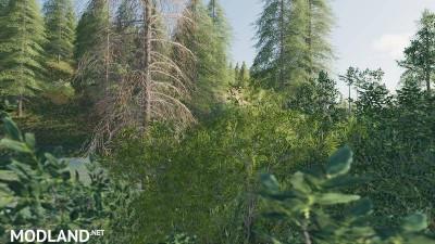 Thuringia forest v 4.0, 2 photo