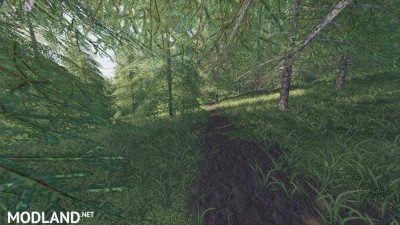 Willamina Forest v 1.2.1, 4 photo