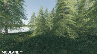 Willamina Forest v 1.2.1, 5 photo