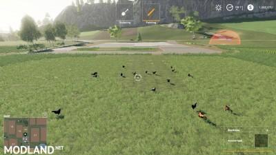 FS19 Free Range Chickens v 1.0