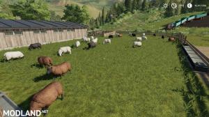 Husbandry Sheep Large, 2 photo