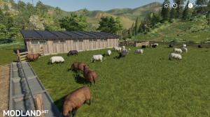 Husbandry Sheep Large, 3 photo