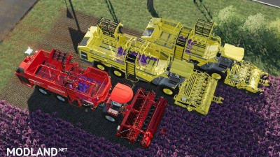 Carrots, onions and cabbage crops v 1.7, 12 photo