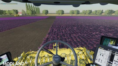 Carrots, onions and cabbage crops v 1.7, 2 photo
