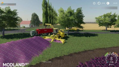 Carrots, onions and cabbage crops v 1.7, 5 photo